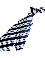 Zodaca Striped Business Wedding Classic Twill Style Necktie Men's New Tie, Blue/White