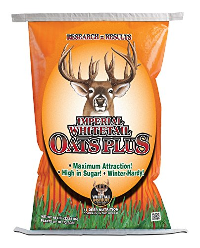 Whitetail Institute Of Na Oats Plus Food Plot Seed, 45 Lb