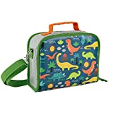 Petit Collage Dinosaurs Eco-Friendly Lunch Box
