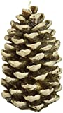 DecoGlow Pine Cone, Small