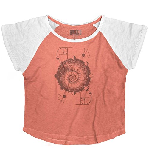 Brisco Brands Nautilus Shell Stylish Symbolic Cool Beautiful Spirit Animal Vintage T Shirts