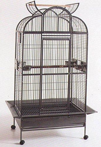 Large Play Dome Top Wrought Iron Bird Parrot Parttot Finc...