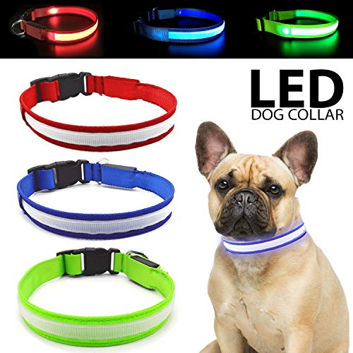 (Talis LED Light-Up Dog Collar (Micro-USB, New Upgrade 2019) Improved Pet Safety &Visibility at Night Waterproof Collar Fits for Small Medium Large Dogs 3 Flashing Modes (Medium, Red))