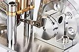 Sunnytech Hot Air Stirling Engine Motor Model