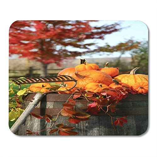 Emvency Mouse Pads Colorful Fall Rake and Pumpkins Laying on Wine Barrel Orange Halloween Harvest Mousepad 9.5