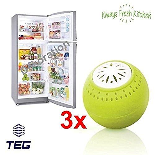 TEG40 - 3er Pack -- KEINE CHEMIE -- NATÜRLICHER GERUCHSKILLER - Geruchsneutralisierer - Kühlschrankgeruch Entferner mit AKTIVKOHLE