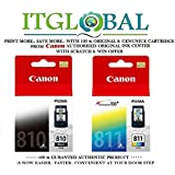 Ink Cartridge for Canon Pg 810/cl 811 - Set of 2