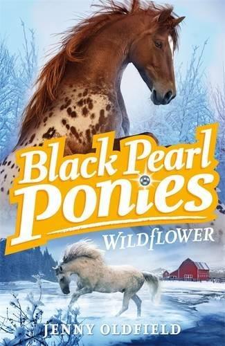 Wildflower (Black Pearl Ponies) (Pony Pearl)