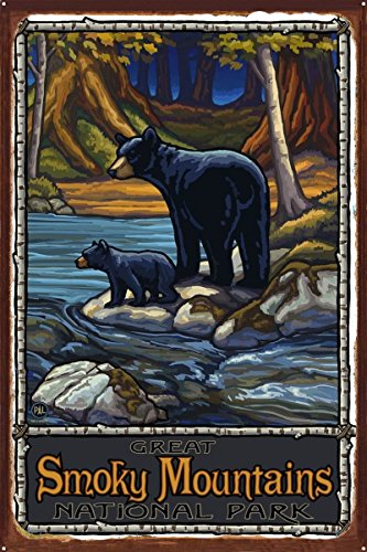 Great Smoky Mountains National Park Bears In Stream Rustic Metal Art Print by Paul A. Lanquist (24