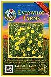 Everwilde Farms - 2000 Dahlberg Daisy Native Wildflower Seeds - Gold Vault Jumbo Seed Packet