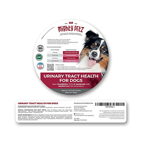 MAX Cranberry for Dogs - Cures & Prevents Painful UTI Urinary Tract Infections. Bladder Support Pills & Kidney Health. No More Antibiotics & Incontinence! D-Mannose & Probiotics Chews, Save on Vet 7