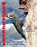img - for Woodpeckers: Drilling Holes & Bagging Bugs book / textbook / text book
