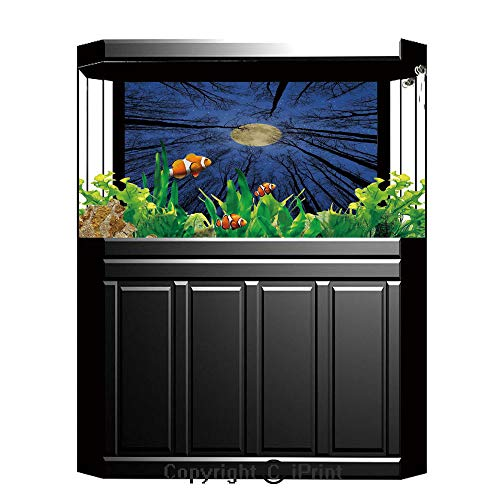 - Terrarium Fish Tank Background,Forest Home Decor,Full Moon Illumination in Woods Star Night Heavenly Lunar Treetops Up Space Art,Blue,Photography Backdrop for Pictures Party Decoration,W48.03