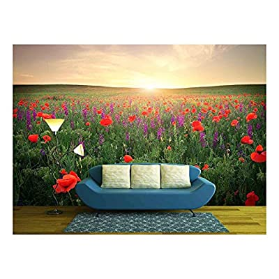 Wonderful Expertise, Field with Grass Violet Flowers and Red Poppies Against The Sunset Sky, Top Quality Design