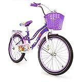 BIKETEK Bicicleta para niña Estilo clásico rodada 20 Color Morado