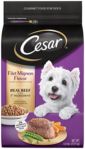 CESAR Filet Mignon Flavor With Spring Vegetables Dry Dog Food 5 Pounds