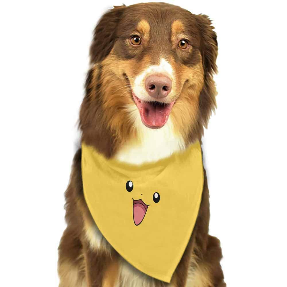Bandana para Perro con Estampado de Calaveras Pet Pooch Boutique