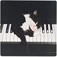 3dRose LLC 8 x 8 x 0.25 Inches Kitten on Piano Keys, Mouse Pad (Mp_119337_1)