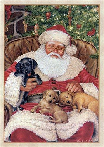 Nap Time - Box of 18 Dog Christmas Cards