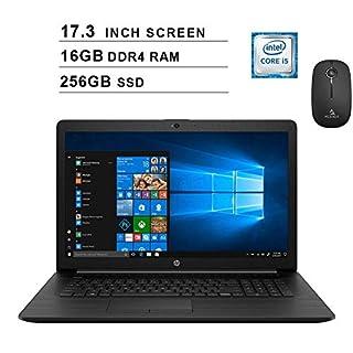 2020 Newest HP Pavilion 17.3 Inch Laptop (Intel Quad-Core i5-8265U up to 3.9 GHz, 16GB RAM, 256GB SSD, Webcam, DVD, Windows 10) (Black) + NexiGo Wireless Mouse Bundle