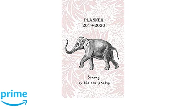 Planner 2019 - 2020 Strong is the new pretty: Vintage Cover ...