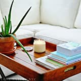 LOVE NATURE NYC Natural Soy Candle Jar, Grass