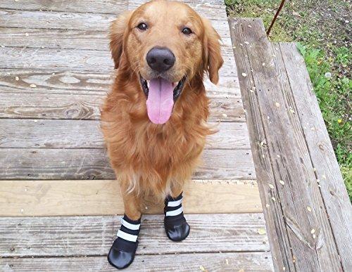 Bark Brite All Weather Neoprene dog boots