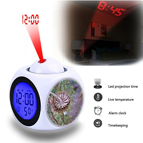 - Projection Alarm Clock Wake Up Bedroom with Data and Temperature Display Talking Function, LED Wall/Ceiling Projection,Customize the pattern-790.Thistle, Flower, Wild, Weed, Unusual Pattern