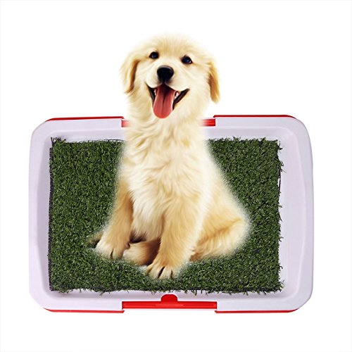 (Dog Potty Training Pee Turf Grass Pad Indoor Pet Patch 25x20x2.5