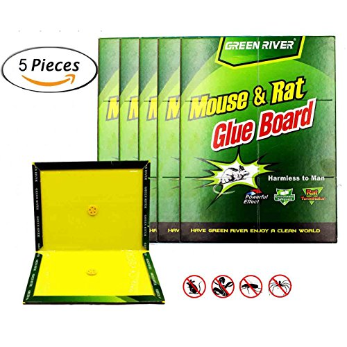 eiito-rat-glue-traps-pack-of-5-rodent-traps-sticky-boards-mouse-trap-glue-board-cockroach-insects-tr