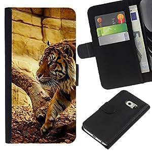 KingStore / Leather Etui en cuir / Samsung Galaxy S6 EDGE / Tiger Beige Wild Big Cat naturaleza animal