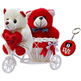 Sky Trends Romantic Valentine Love Couple Teddy Basket Cycle Valentine Romantic Teddyss Bears Gifts for Wife Girlfriend Boyfriend Fiance DSCS007