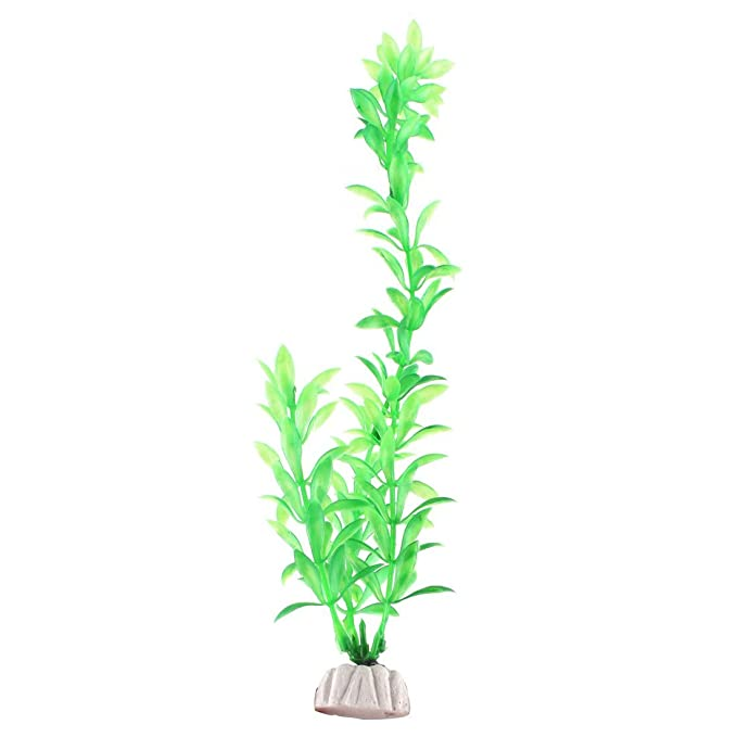 Amazon.com : eDealMax acuario de plástico pecera artificiales Planta Decoración Submarino ornamento 10pcs Verde : Pet Supplies