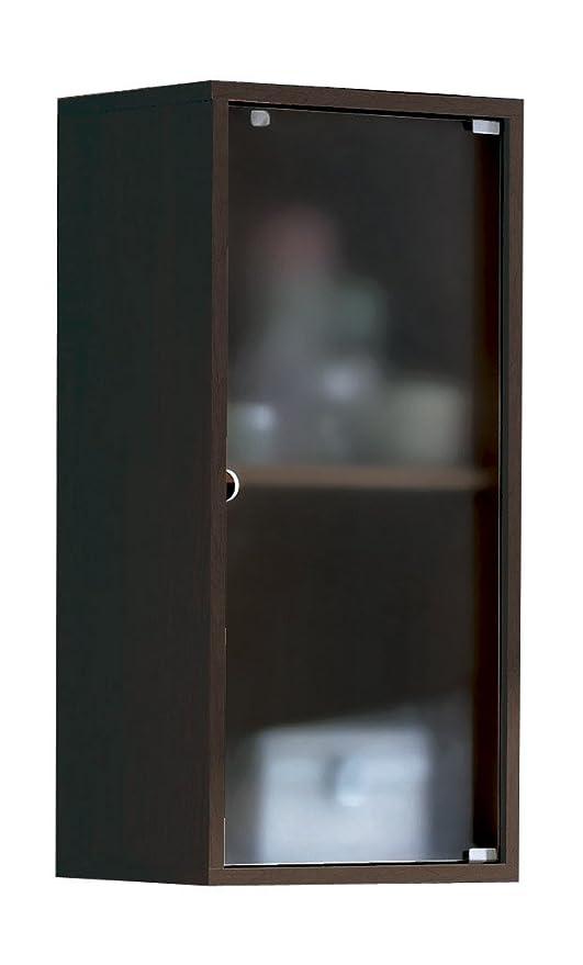 Armario aéreo para baño o aseo para colgar en pared con puerta de cristal y estante