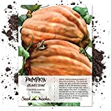 Package of 10 Seeds, Atlantic Giant Pumpkin (Cucurbita maxima) Non-GMO Seeds by Seed Needs