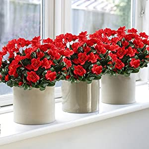 GTIDEA 4pcs Silk Flower Artificial Azalea Fake Faux Primroses Bouquet Arrangements DIY Home Garden Table Patio Wedding Party Christmas Decoration Red 2