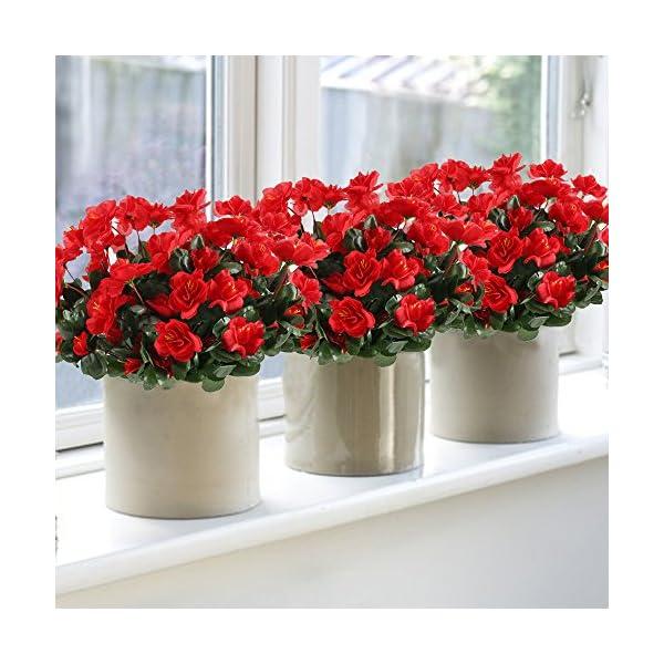 GTIDEA-4pcs-Silk-Flower-Artificial-Azalea-Fake-Faux-Primroses-Bouquet-Arrangements-DIY-Home-Garden-Table-Patio-Wedding-Party-Christmas-Decoration-Red