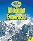 img - for Mount Everest with Code (Wonders of the World) book / textbook / text book