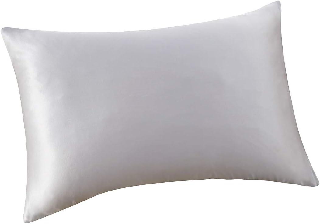 ALASKA BEAR Natural Silk Pillowcase, Hypoallergenic, 19 Momme, 600 Thread Count 100 Percent Mulberry Silk, Standard Size with Hidden Zipper (1, Silver)