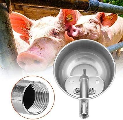 Sheens Tazón de Agua automático de Acero Inoxidable Ganadería de Grado agrícola Bebedero para Cerdos Ovejas Cabras Lechones Lechones Caballos pequeños Ganado Granja Suministros para Ganado