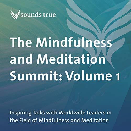 (The Mindfulness and Meditation Summit: Volume 1: Inspiring Talks with Worldwide Leaders in the Field of Mindfulness and Meditation)