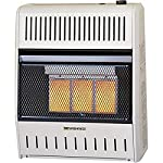ProCom 18000 BTU Vent Free Infrared Thermostat Control Space Heater - Dual Fuel, MNSD3TPA