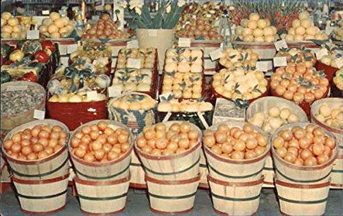 A Shipper's Display of Tropical Fruit Seen Throughout Florida Original Vintage Postcard (Shipper Display)