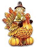 Fall Winter Autumn Thanksgiving Pumpkin Harvest Home Accent Decoration (Turkey Figurine)