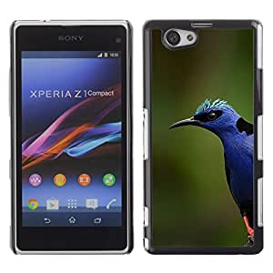 Pájaro Azul Colorido Naturaleza Primavera Verano- Metal de aluminio y de plástico duro Caja del teléfono - Negro - Sony Xperia Z1 Compact / Z1 Mini (Not Z1)