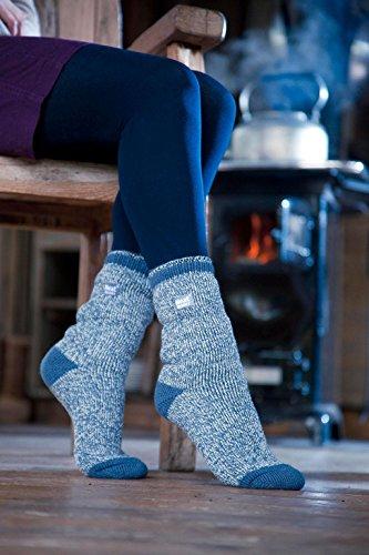 Femme Chaussettes Holders Thermiques Taille En 10 Chaude 37 1823 Fantaisie Heat 42 Hiver Caldbeck Epaisse Eur Couleurs xcWfqUUH