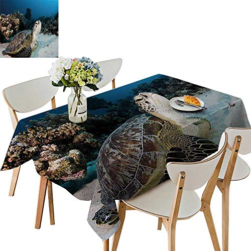 UHOO2018 Printed Fabric Tablecloth Square/Rectangle Animal The House Coral in Red Sea Egypt Amphibian Brown COC ut Aqua Wedding Party Restaurant,52 x -