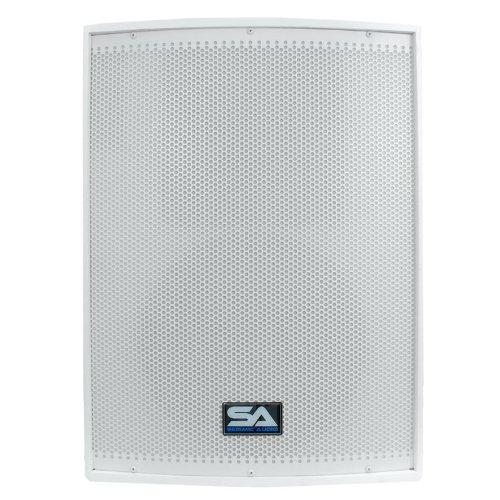 Seismic Audio - Arctic12Single 12-Inch PA Speaker or Floor Monitor - 300 Watts RMS, White