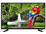 Powereye 59.90 cm (24 inch) HD READY LED TV Black