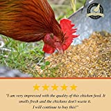 Naturally Free Organic Grower Feed for Chickens and Ducks - Non-GMO Project Verified, Soy Free and Corn Free - Scratch and Peck Feeds